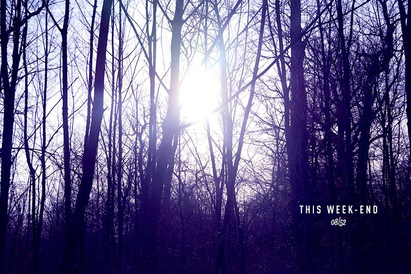 THE WEEK-END 8/52