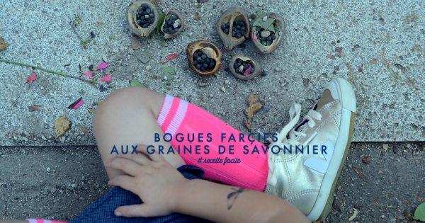 bogues-farcie-01