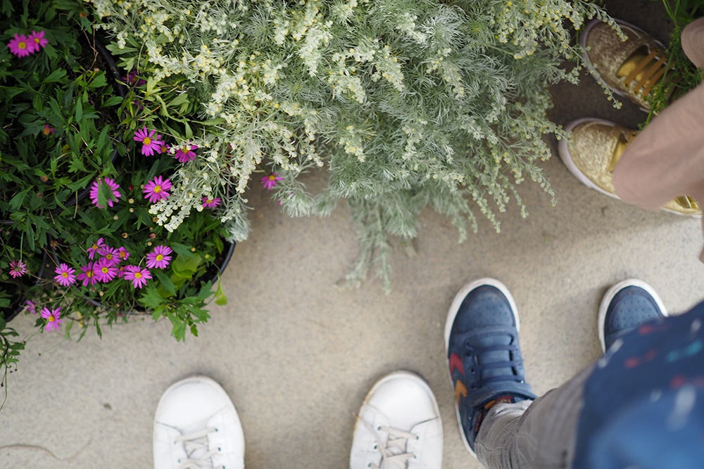 parc-floral-06