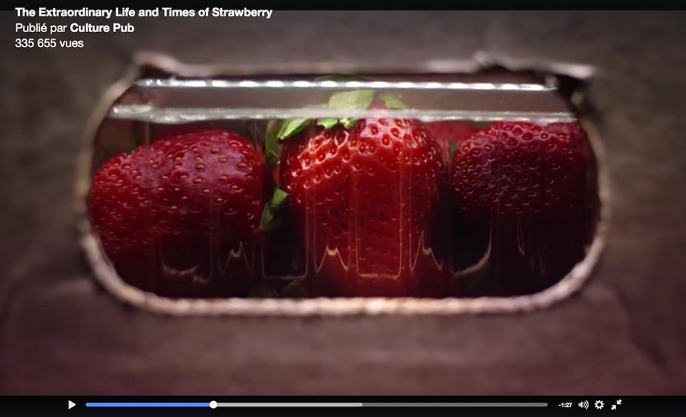 life-strawberry