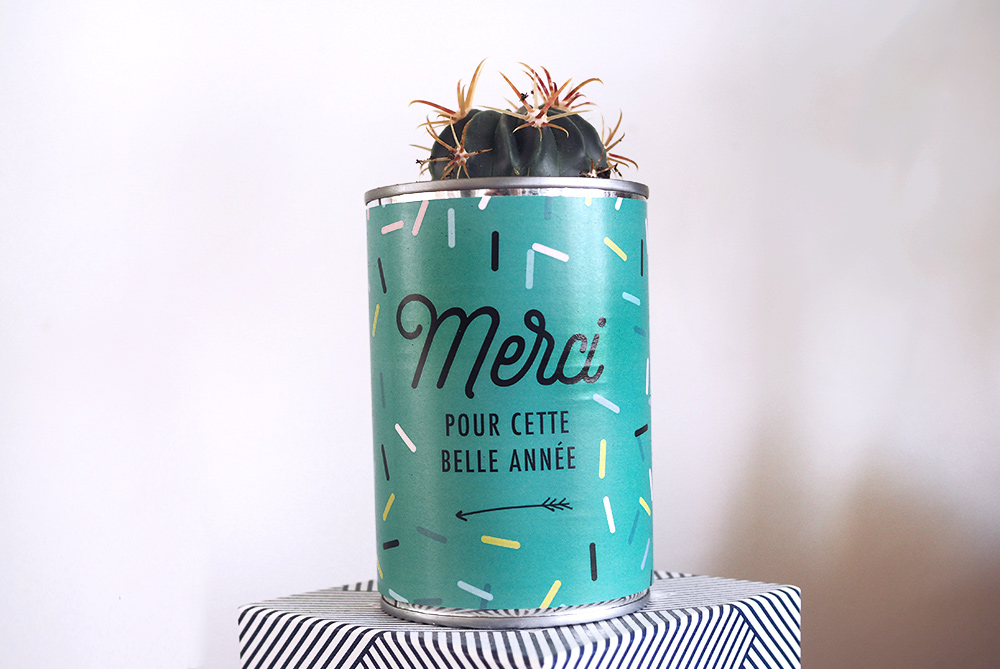 diy-maitresse-pot-cactus-02