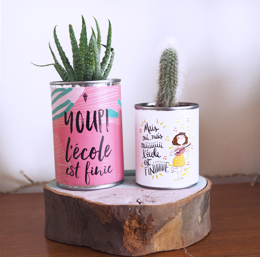 diy-maitresse-pot-cactus-03