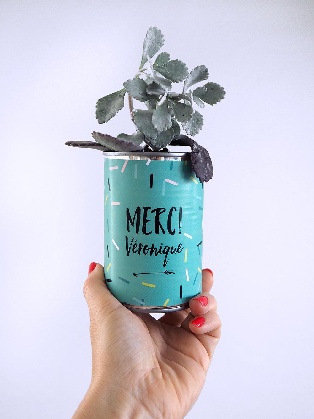 diy-maitresse-pot-cactus-06