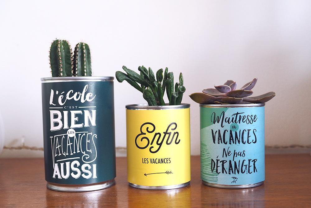 diy-maitresse-pot-cactus