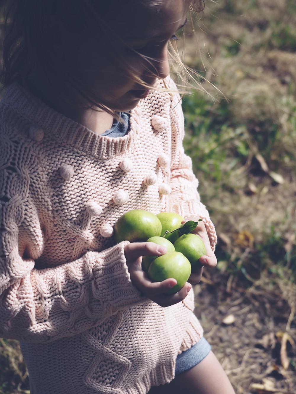 fille-cueillette-pommes