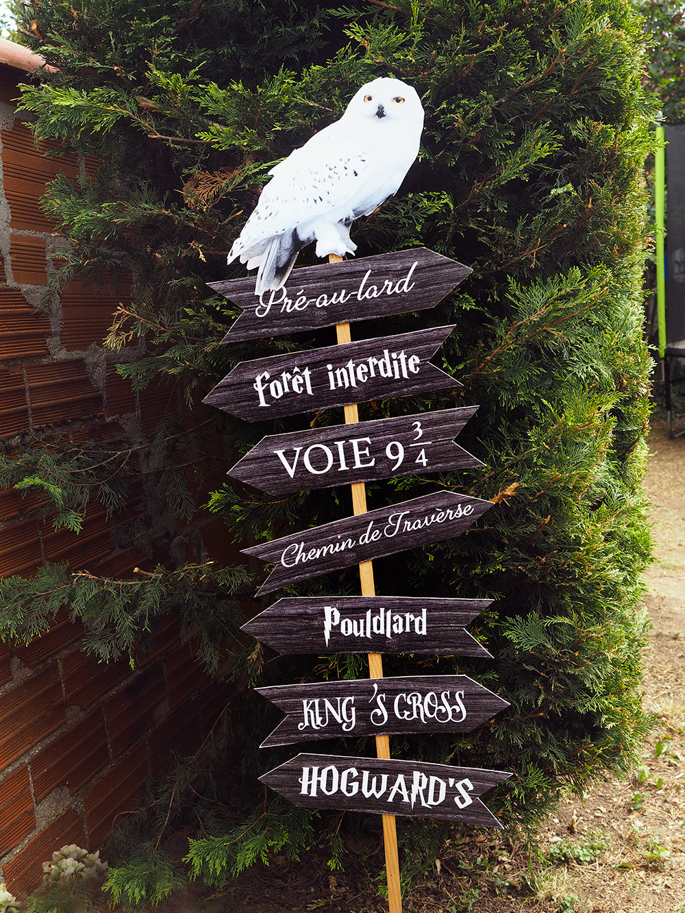 Organiser Une Fête Harry Potter Minireyveminireyve